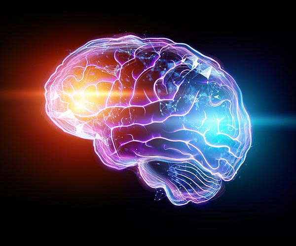The image of the human brain, a hologram, a dark background
