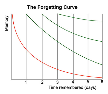 Figure 1. The Forgetting Curve